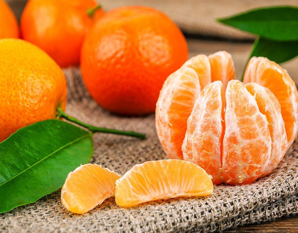 Un museo e una bibita per valorizzare le Clementine di Calabria 11