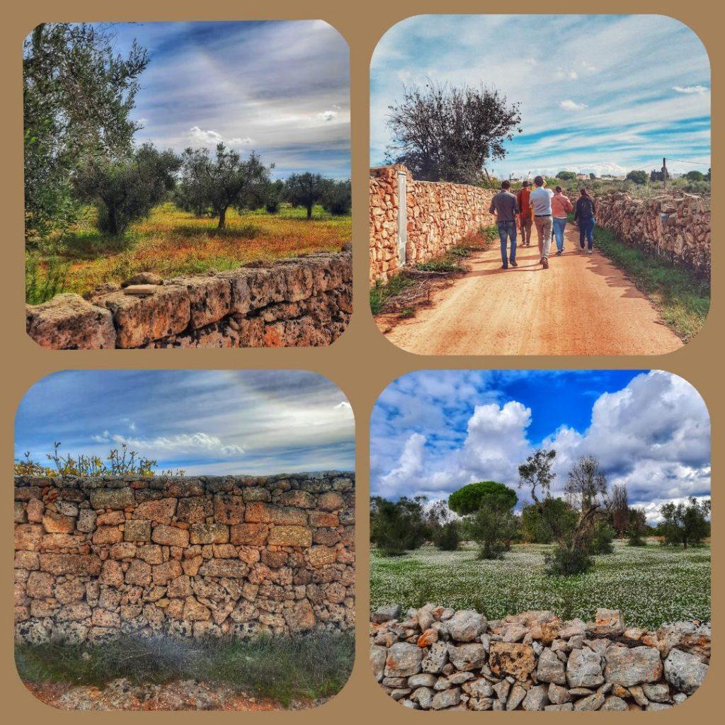 Turismo lento nel Salento: passeggiate e foraging nelle campagne